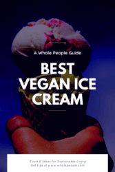 best vegan ice cream